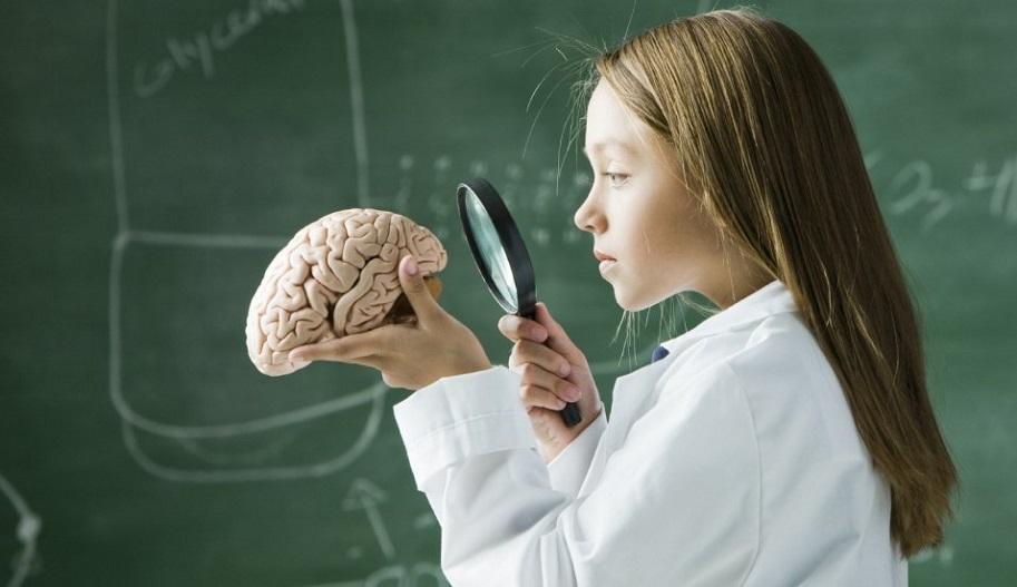 Развитие произвольной памяти