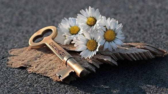 Ключ и ромашки
