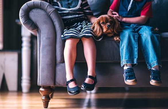 Двое детей сидят на диване