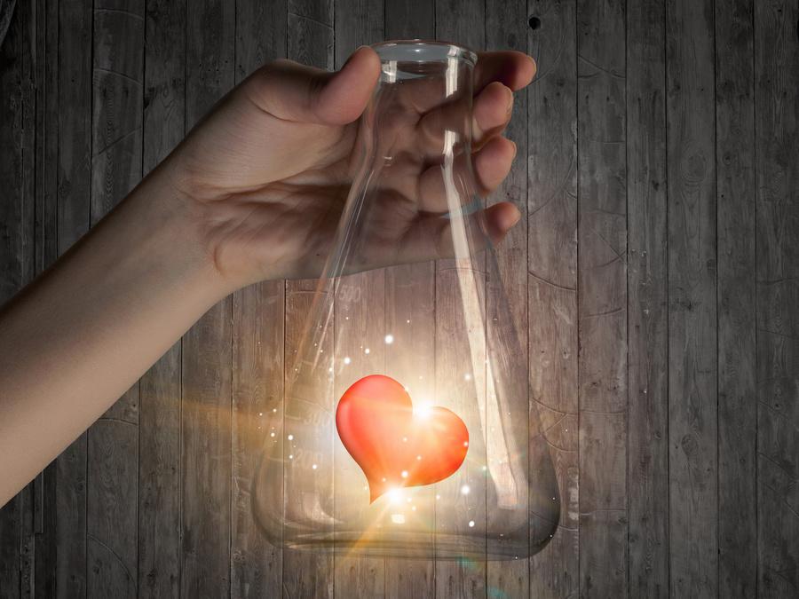 Химия любви: почему мы влюбляемся?